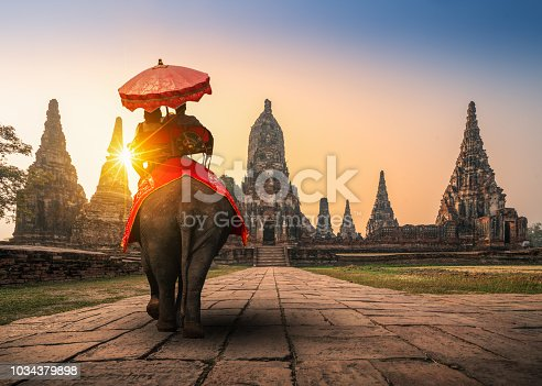 istock Tourists With an Elephant at Wat Chaiwatthanaram temple in Ayutthaya Historical Park, a UNESCO world heritage site in Thailand 1034379898