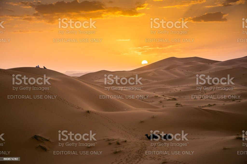 Tourists With Camels Watching The Sun Set at Erg Chebbi stock photo