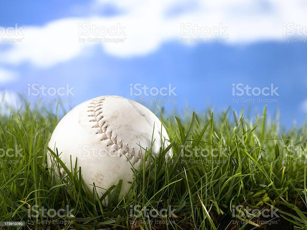 tournament softball royalty-free stock photo