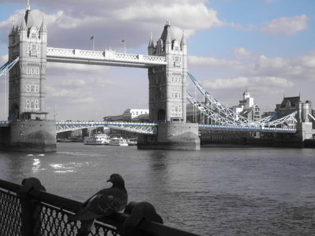 tower bridge - hotel mailand stock-fotos und bilder