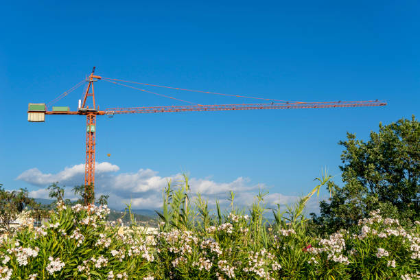 tower crane with nature landscape - foto stock