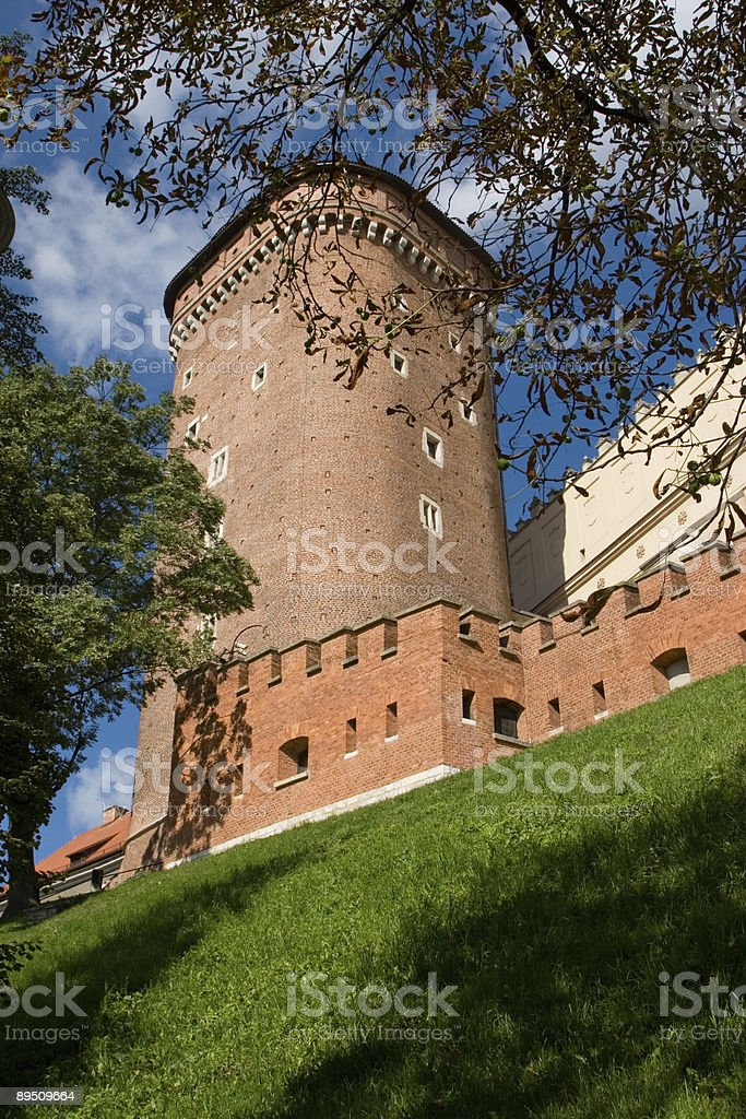 Tower in the Castle Wall royalty-free stock photo