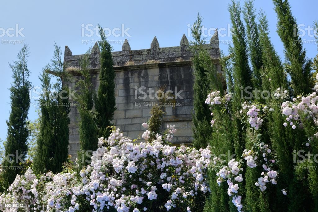 Torre de um antigo cercado por flores - Foto de stock de Antigo royalty-free