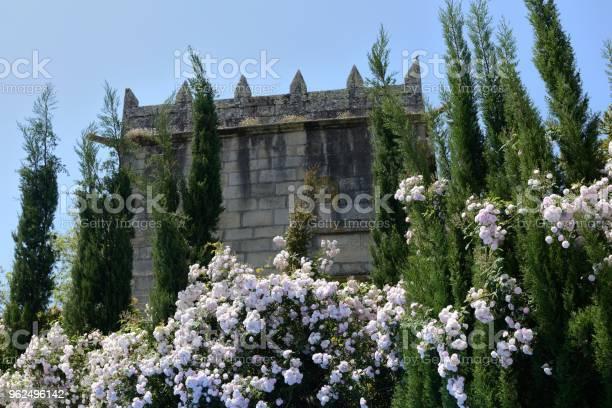 Foto de Torre De Um Antigo Cercado Por Flores e mais fotos de stock de Antigo