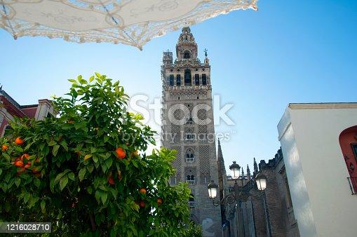Tower of Giralda, orange tree, white lace umbrella and street lamps. Blue sky, Seville, Spain