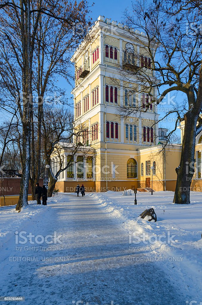 Tower of Palace and Park ensemble, winter landscape, Gomel, Belarus stock photo