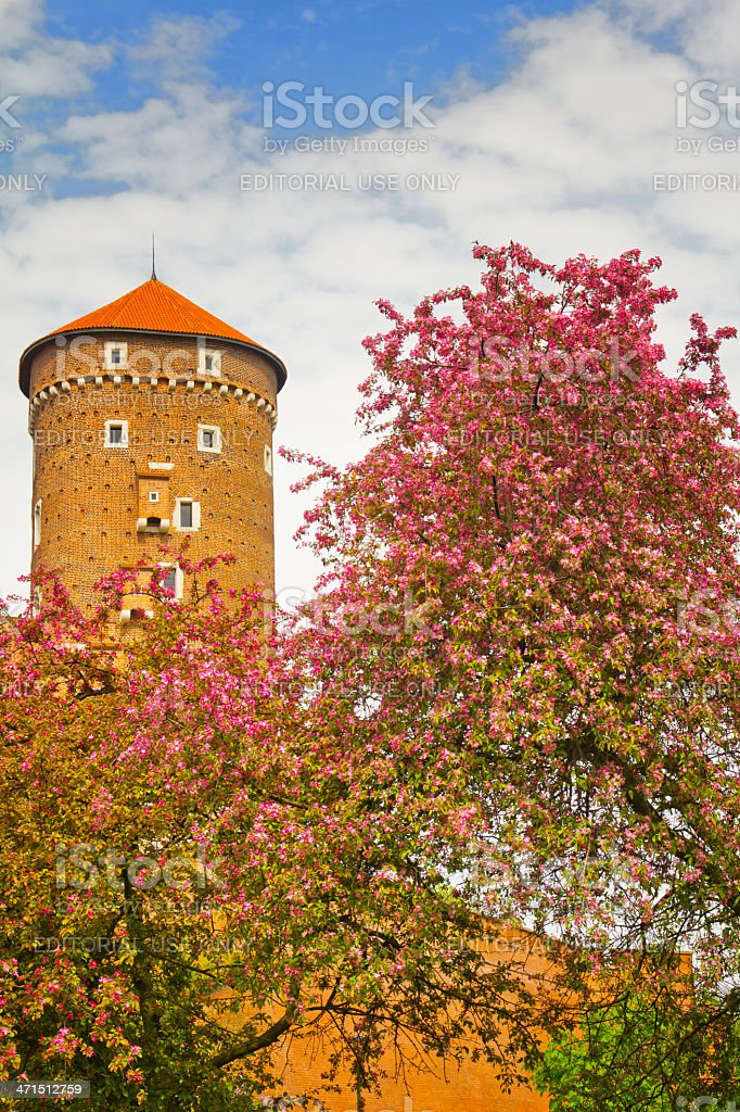 Tower of Wawel Royal Castle in Cracow, Poland royalty-free stock photo
