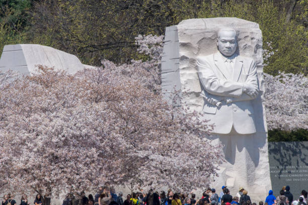 Towering figure Visitors seem dwarfed by the towering sculpture of Martin Luther King, Jr.at the Tidal Basin in Washingon DC. mlk stock pictures, royalty-free photos & images