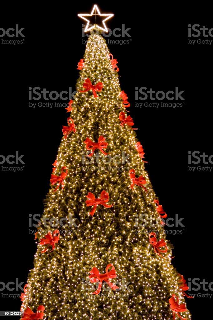 Town center Christmas tree Lizenzfreies stock-foto