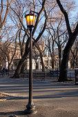 city street lamp on a nice blue sky day evening light at a city park springtime