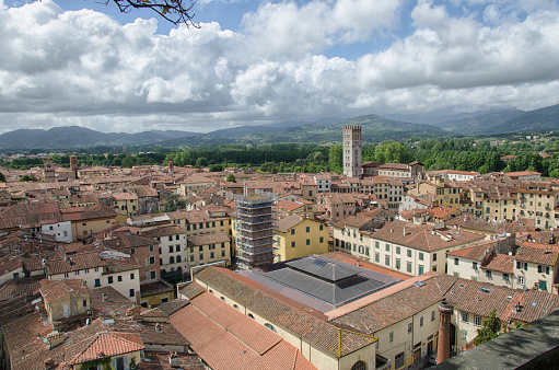 istock Town of Lucca seen from the Torre Guinigi 693673750