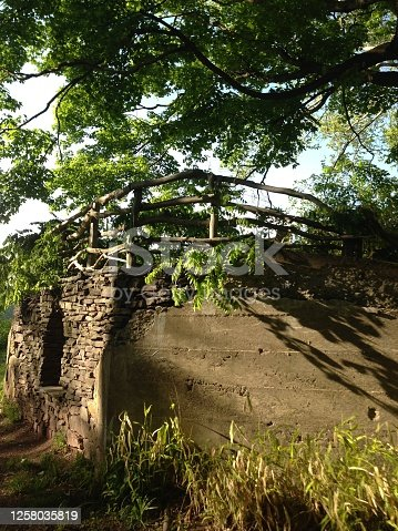 istock Towpath in New Hope, PA 1258035819