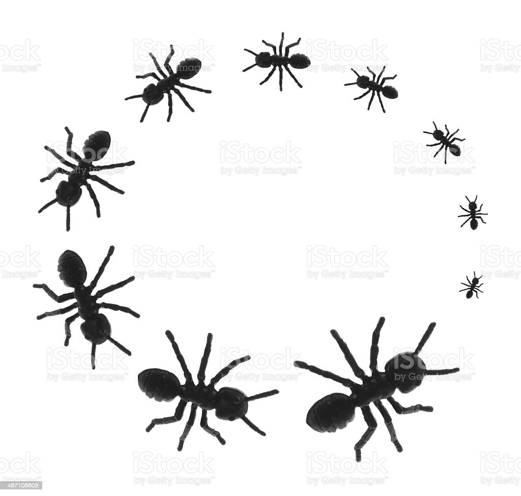 Toy Ants in Circle royalty-free stock photo