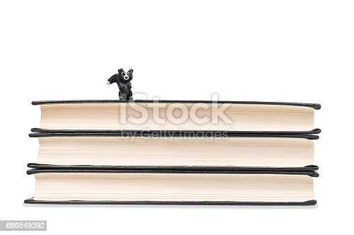 istock Toy badger on books 686549392