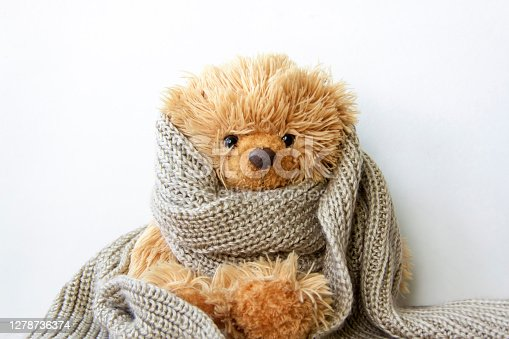 Toy bear in a warm scarf. Season of colds and infections. Strengthening of immunity.