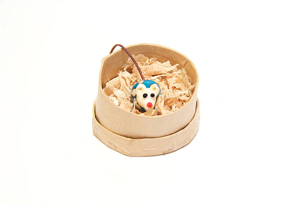 Toy china mouse in a round box stock photo