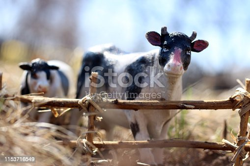 toy cow with calf photographed on the street with a fence of branches on the ground in the grass