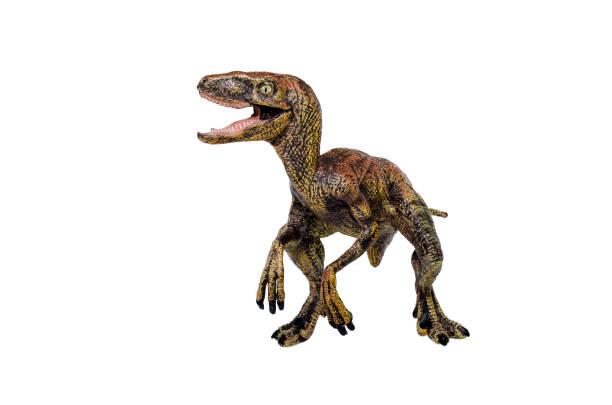 Toy Dinosaur stock photo