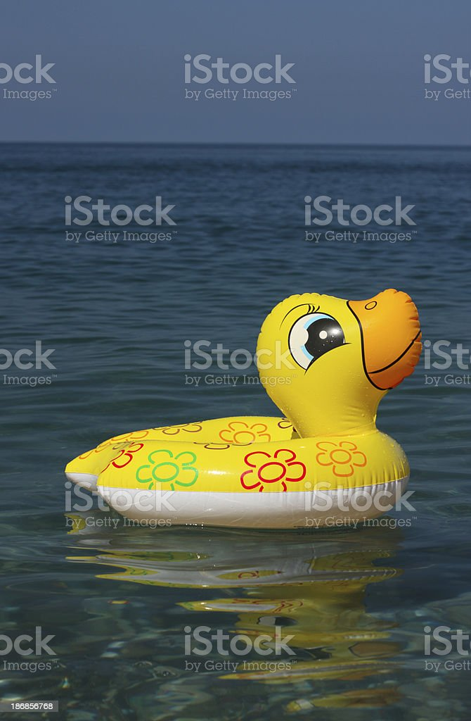 Toy duck on a water royalty-free stock photo