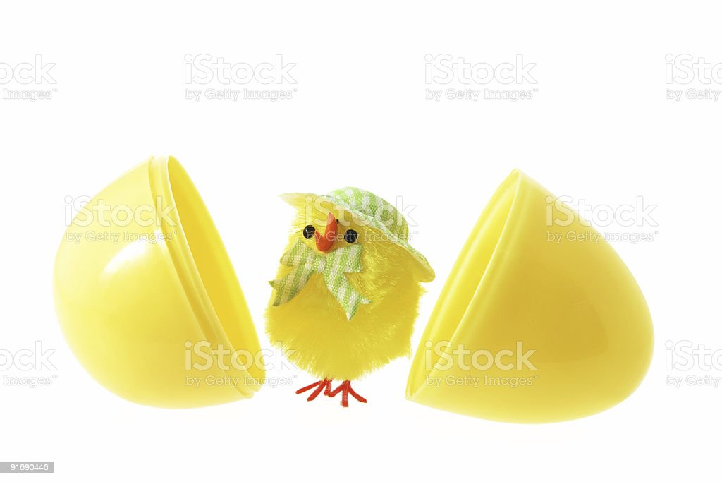 Toy Easter Chick and Egg Shells royalty-free stock photo