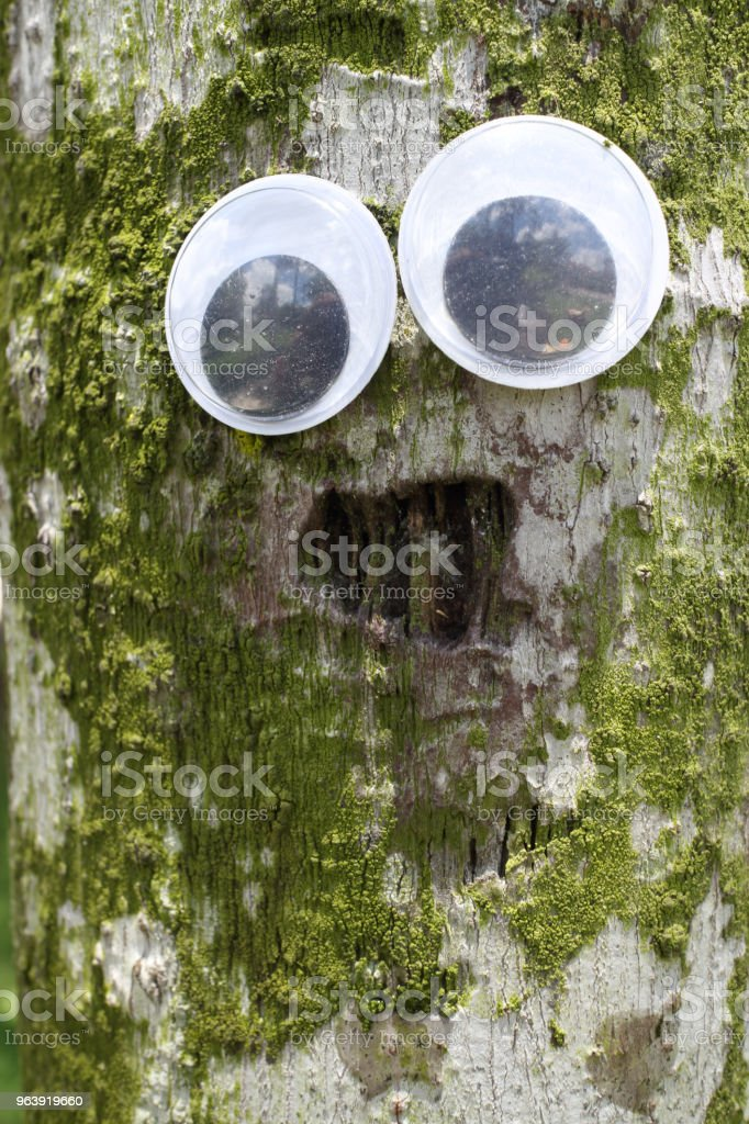 toy eyes ideas - Royalty-free Animal Stock Photo