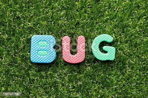 istock Toy foam letter in word bug on green grass background 1207077087