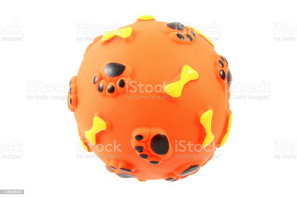 toy for dog stock photo