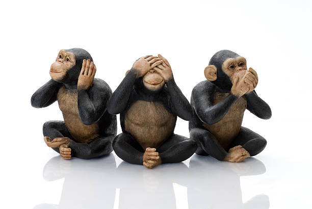 Toy Monkeys Hear No Evil, See No Evil, Speak No Evil! hear no evil stock pictures, royalty-free photos & images