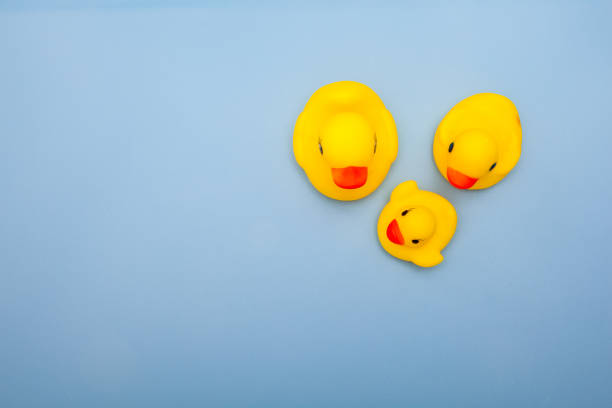 Toy of yellow duck family on blue backgrounds picture id657301822?b=1&k=6&m=657301822&s=612x612&w=0&h=3p14e8r8511tz54ii1ixqxmbvndn1dtpg ivtiiqhg8=