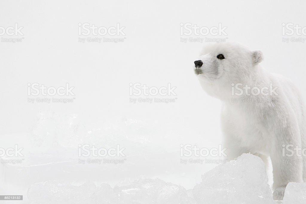 A toy polar bear and ice royalty-free stock photo