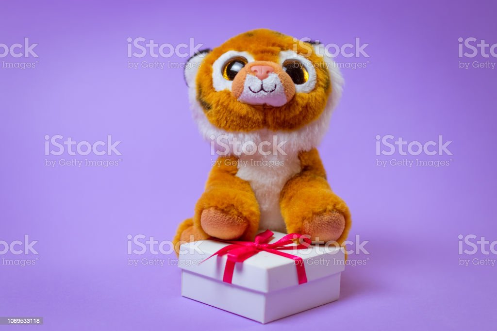 Toy Tiger sits on a white gift box with a Red Ribbon on a purple...