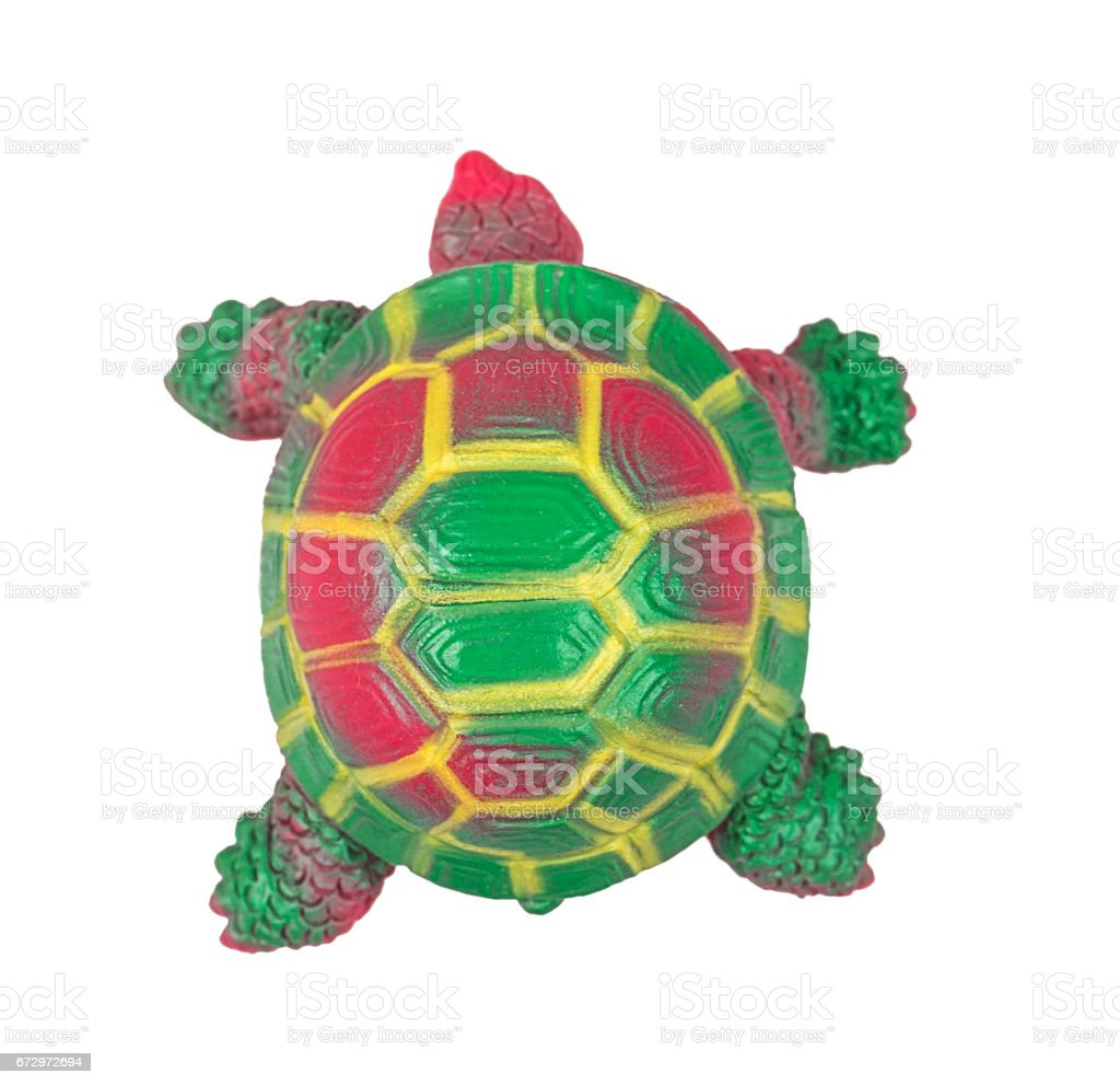 toy turtle stock photo