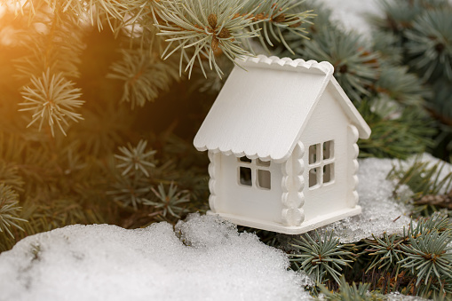 Toy white house is on the pine branch with snow in sunny day