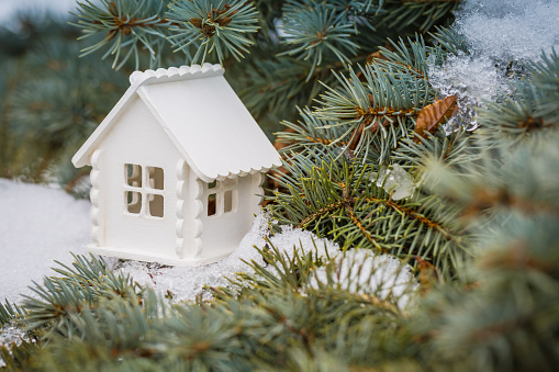 Toy white house is on the pine branch with snow