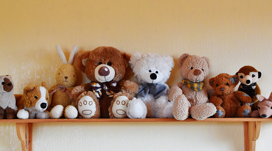 Toys for children sitting in row on wooden shelf