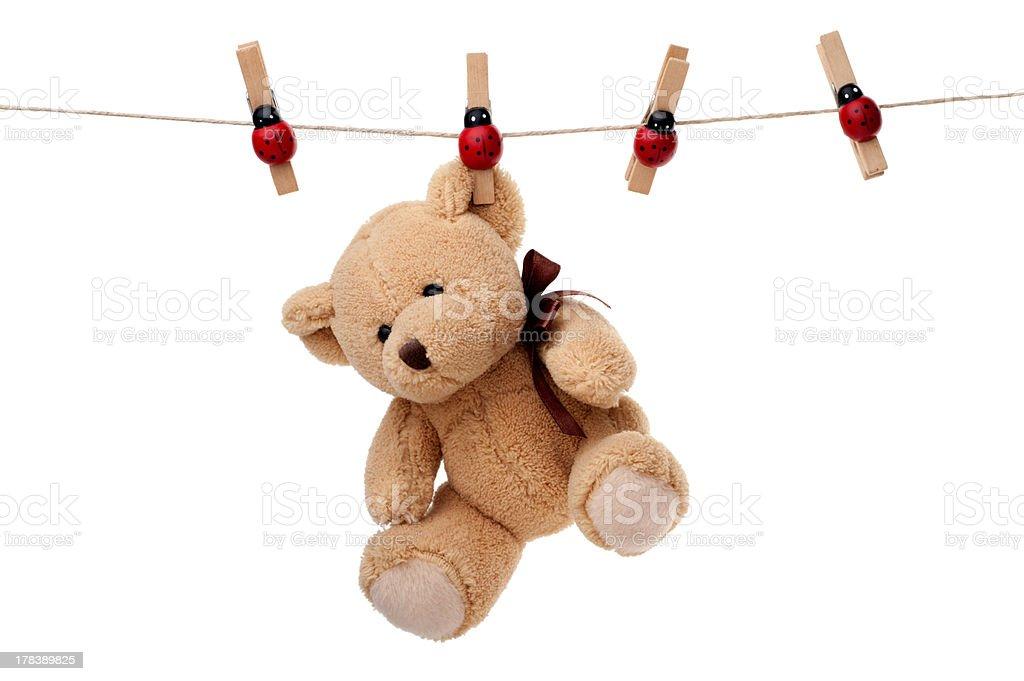 Toys: teddy bear hanging on clothesline stock photo