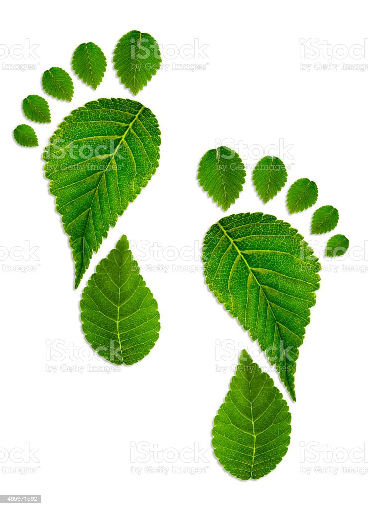 Trace foot from leaves stock photo