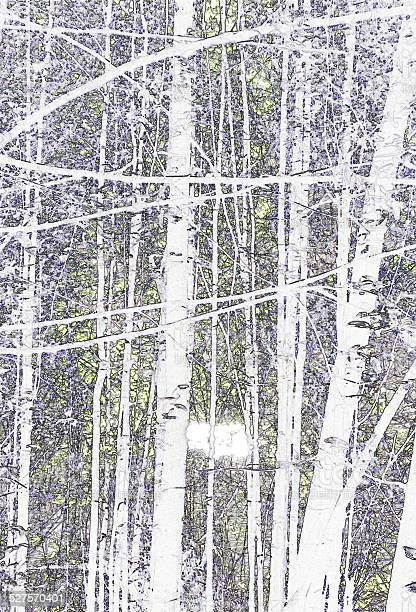 Photo of Traced forest image in soft colour tones