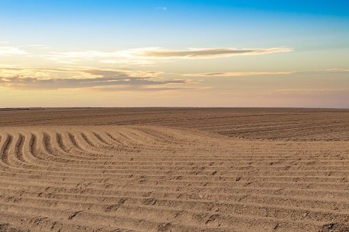 Traces of a tractor in a ploughed field at dusk.