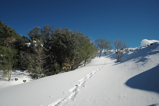 istock traces of hiker with snowshoes prints in the fresh snow 1131243579