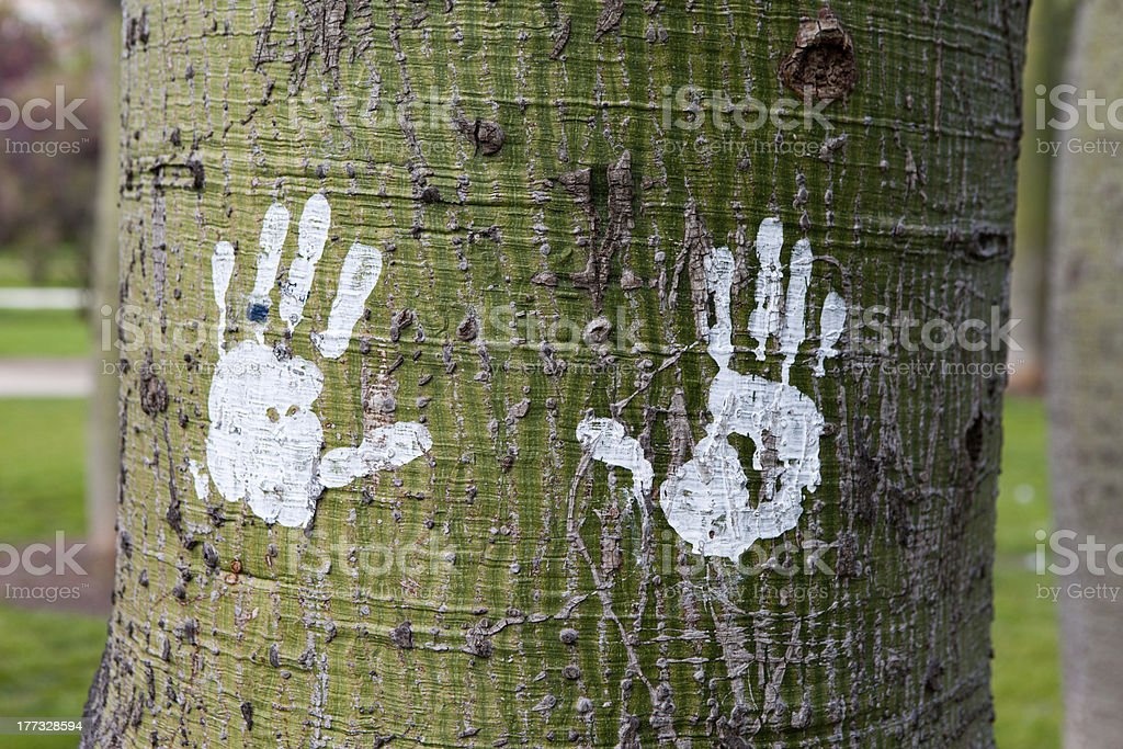 Traces of paint on tree royalty-free stock photo