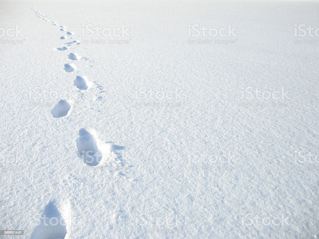 Traces of  person. royalty-free stock photo