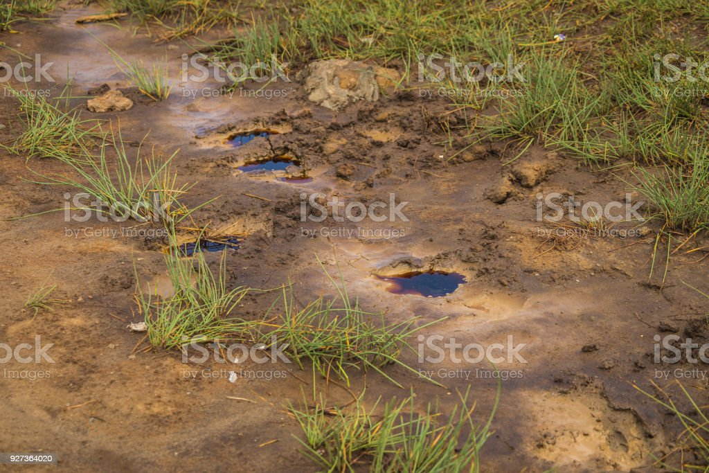 Traces on clay soil filled with water - Royalty-free Abstract Stock Photo