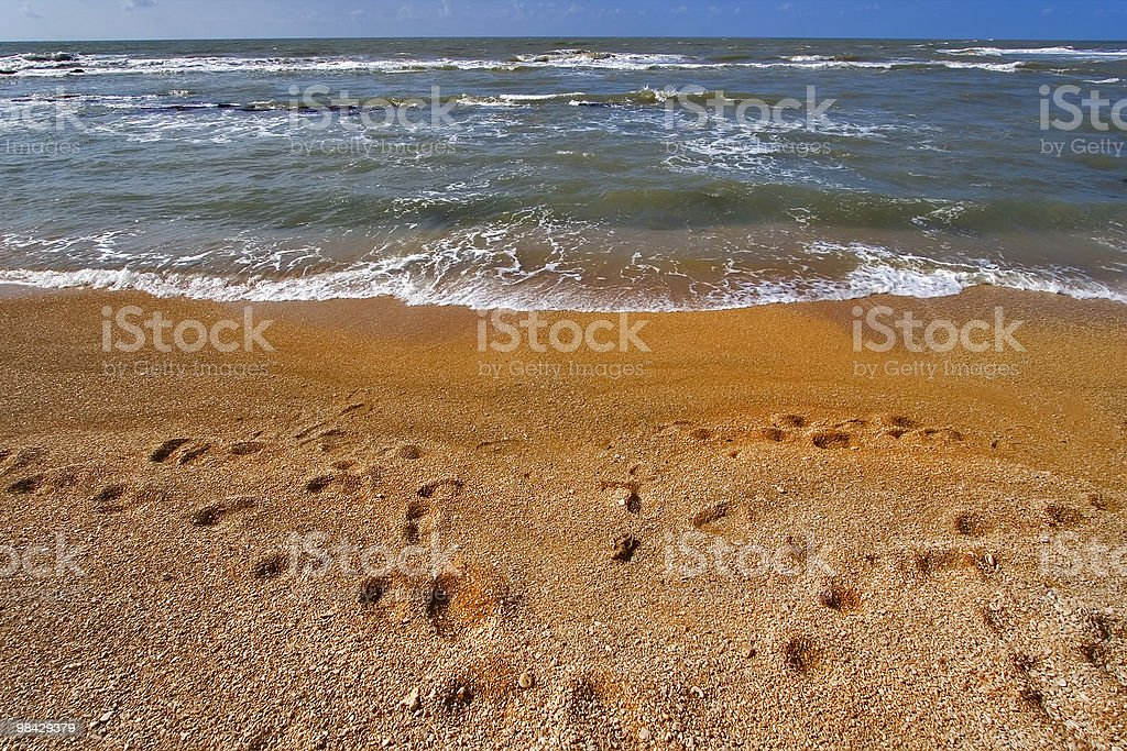 Traces on sand. royalty-free stock photo