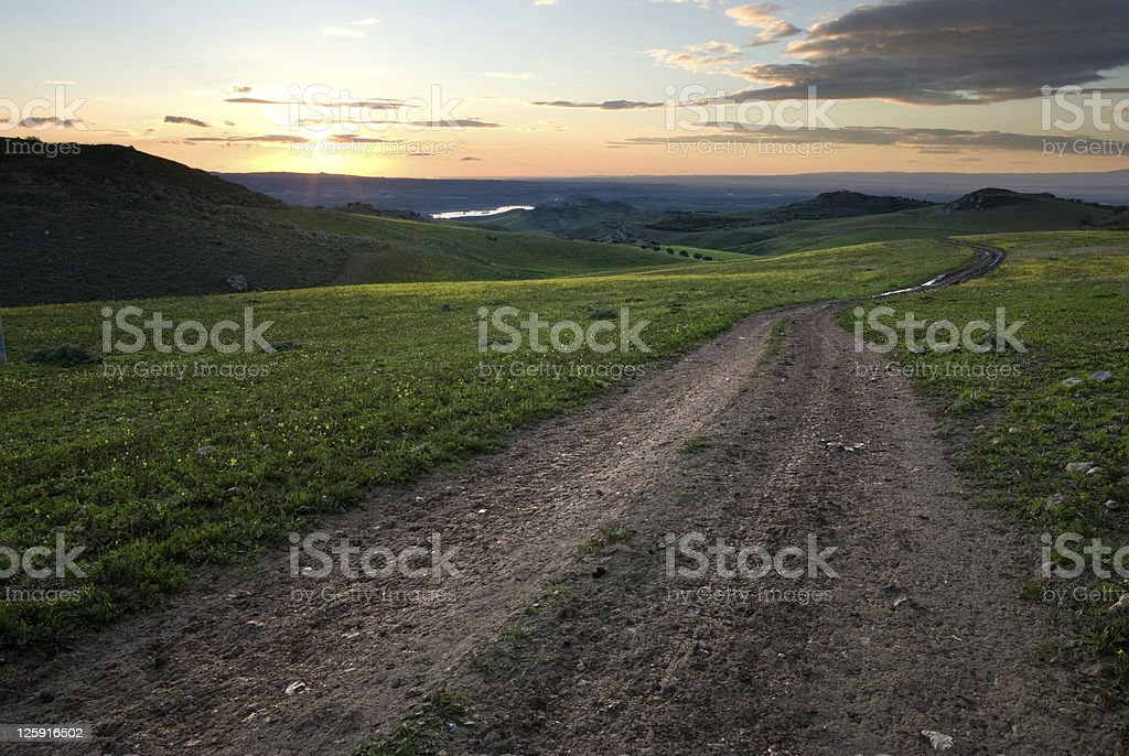 Track in grass to sunset royalty-free stock photo