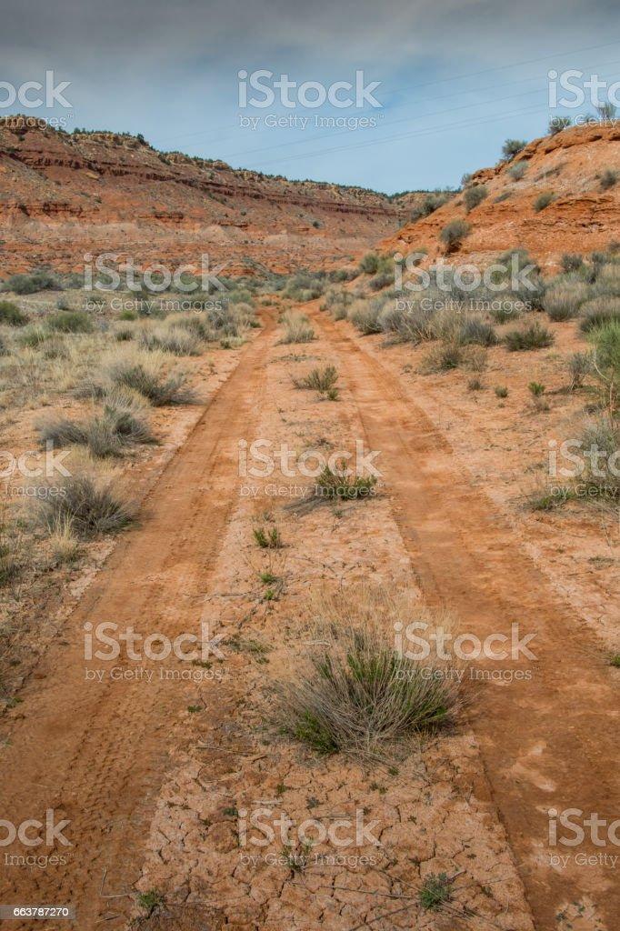 Track in the Muddy Desert stock photo