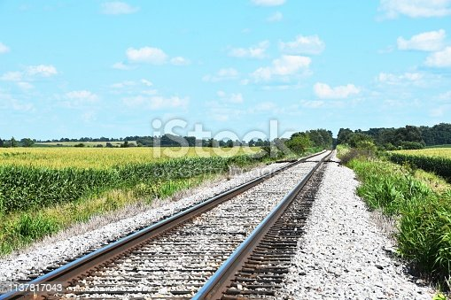 Railroad track through cornfield in the country.