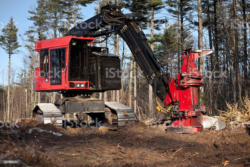 Tracked Feller Buncher for harvesting logs royalty-free stock photo