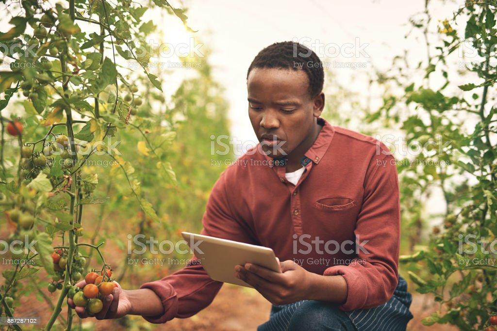Sus cultivos con tecnología de seguimiento - foto de stock