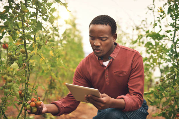 Tracking his crops with technology stock photo